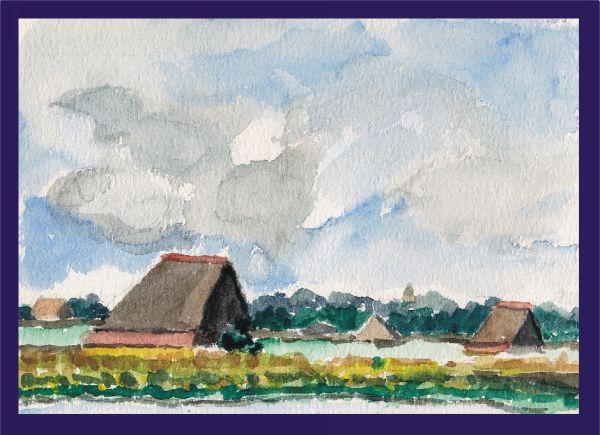 Texel: Schapenboat